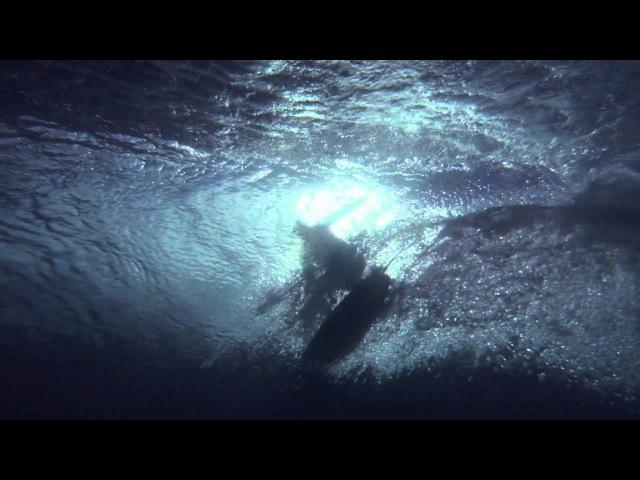 Красота серфинга под музыку Ханса Циммера