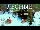 Один в тайге Кемпинг - Alone In The Wild Сamping