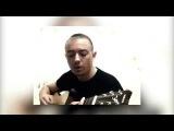 Кавер Белые тени пой гитара и Алексин кошка