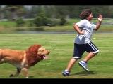 Videos De Bromas 2016 - videos engraçados para rir - videos chistoso - videos de risa p6