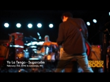 Yo La Tengo - Sugarcube (live 2016)
