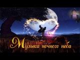 Ночное небо Музыка ночного неба