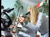 Факультет биологии и экологии ЯрГУ в 2006 году
