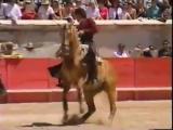 Лошади_ Что делает эта лошадь Вау_ Лошадь vs бык _.mp4
