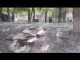 Поездка в Каменск-Уральский 16.06.015 г.
