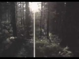 Darkthrone - Too Old Too Cold (from The Cult is Alive)