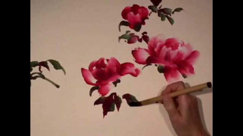 Peony Butterfly part 1 - Chinese Brush Painting by Virginia Lloyd-Davies