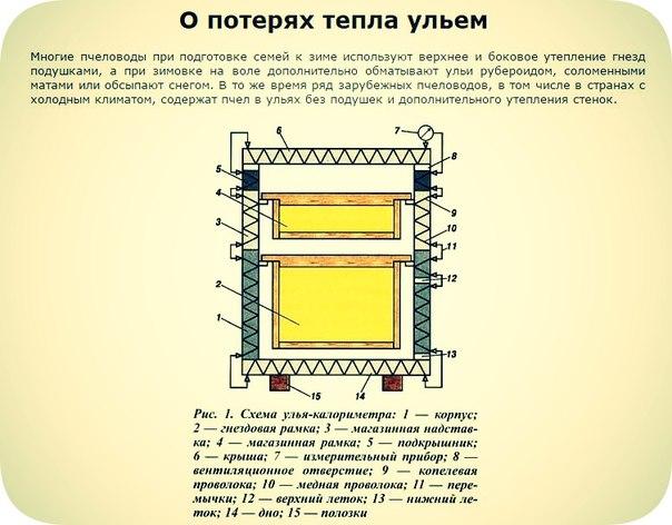 Схема улья - калориметра (улей