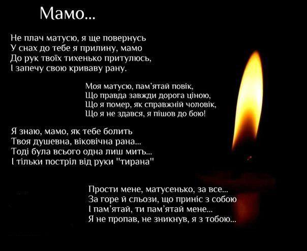 Семь воинов за последние сутки погибли на Донбассе - Цензор.НЕТ 3296