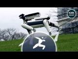 Новый робот SpotMini от Boston Dynamics