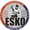ЕСКО   - Профессиональный бокс в Казахстане