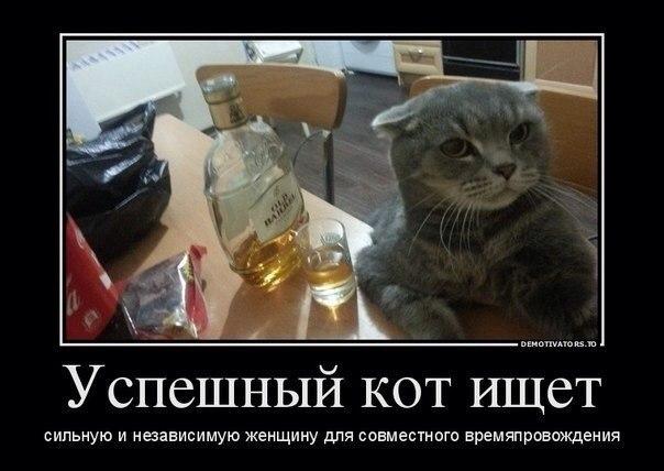 http://cs622116.vk.me/v622116455/303e5/z2FfopFbepM.jpg