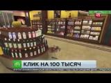 100 тысяч за разбитую бутылку в интернет-магазине