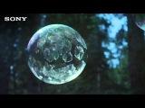 Мыльные пузыри замерзают на морозе