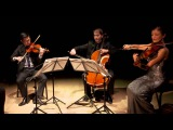 Barber Adagio for Strings, Original Version, Dover Quartet