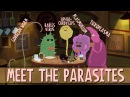 How parasites change their hosts behavior - Jaap de Roode
