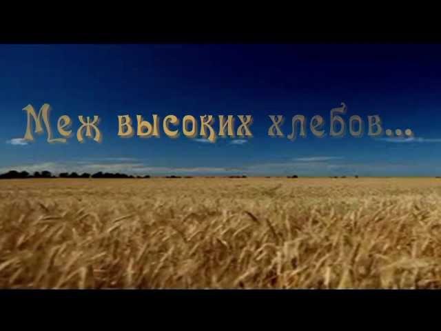 Олег Погудин Меж высоких хлебов