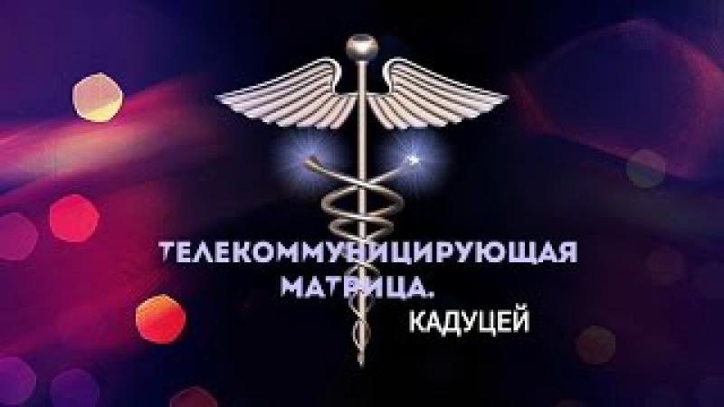 Выпуск 20 Телекоммуницирующая Матрица Кадуцей