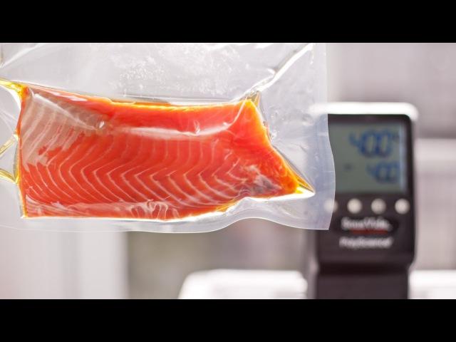 ChefSteps • Salmon 104˚F • Salmon Mi Cuit
