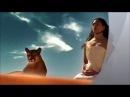 Самая красивая арабская песня