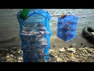 Дністер. Дністровське водосховище відпочинок і рибалка. Діамантова рибалка