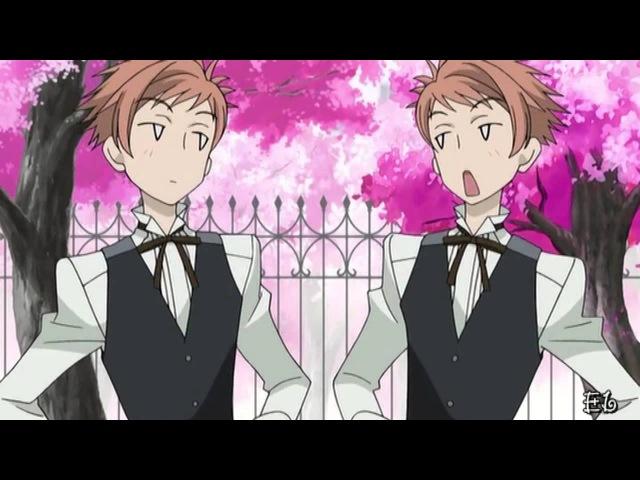 Нас называют близнецы Хикару/Каору