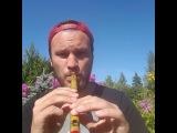 """Silver Laas on Instagram: """"ELINA BORN OTSIB BÄNDI! #flute #pickme"""""""