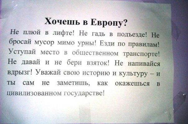 OvULhE_4miY.jpg