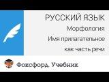 Русский язык. Морфология Имя прилагательное как часть речи. Центр онлайн-обучения Фоксфорд