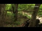 Тренировка Cпецназа РФ  Training Russian Special forces