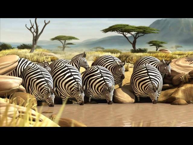 Надувные звери. Что было бы, если все животные стали толстыми часть 1 HD 720 px