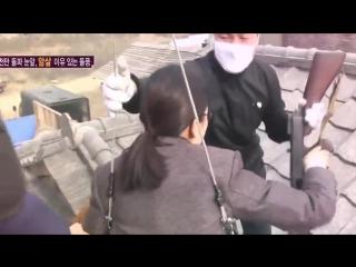 영화 암살 흥행의 주역 전지현의 몸 사리지 않는 액션! @한밤의 TV연예 0812, YouTube