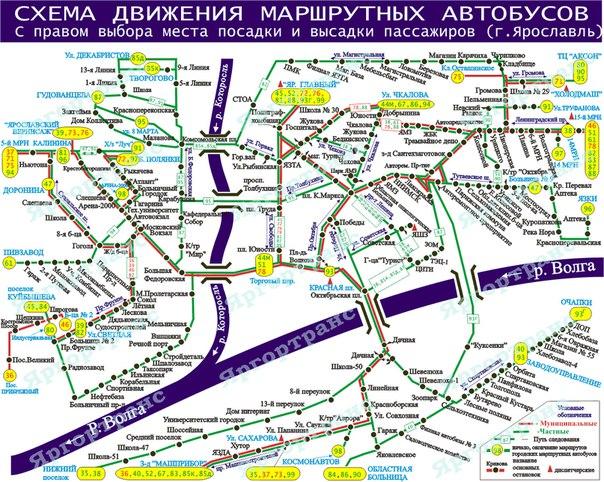 Ссылка yarmedexpert.ru