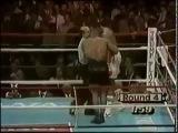 Майк Тайсон. История одного боксера. __  Mike Tyson. The Story of a boxer. vfqr nfqcjy. bcnjhbz jlyjuj ,jrcthf. __  mike tyson.