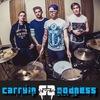 Carrying Goodness [Punk Rock/Alternative]
