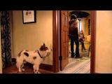 Сериал Disney - Собака точка ком Сезон 1 Серия 1