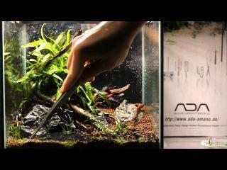 Easy Aquascaping - Do!aqua Cube 25x25x25 - Step by Step