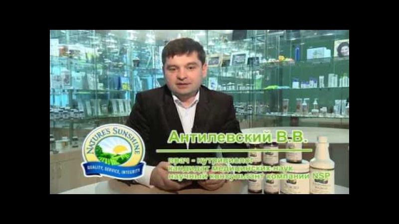 Антилевский ЖКТ вводная лекция 30 минут