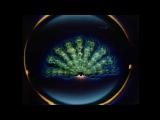Elektric Music - TV 2 (Unofficial Video)