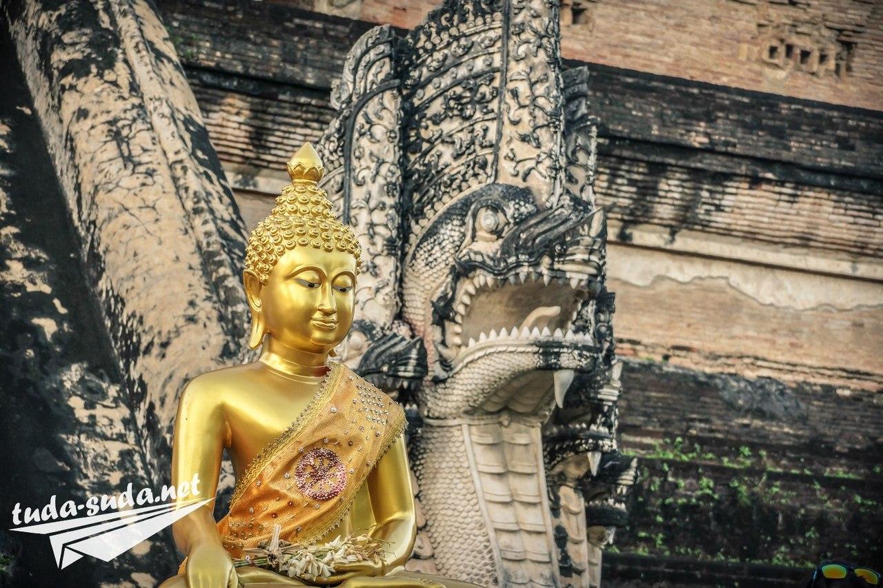 статуя будды фото