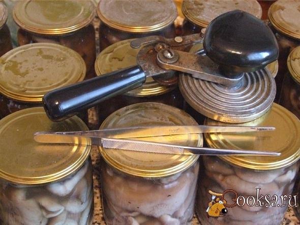 Маринованные маслята на зиму Маринование маслят на зиму – процесс трудоемкий: чего стоит одна только предварительная очистка грибов, а ведь затем, чтобы маринад получился прозрачным и вкусным, грибочки необходимо будет несколько раз отварить! Впрочем, результат стоит затраченных усилий: маринованные маслята – изумительно вкусная домашняя закуска, которая и разнообразит повседневное меню, и отлично украсит праздничный стол.