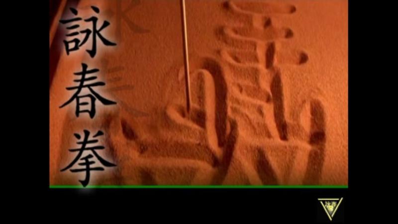 002 Уроки Вин Чунь Кунг фу 2 принцип центральной линии 2