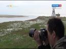 Волонтеры отправились на остров Белый в поисках братской могилы участников конвоя БД-5