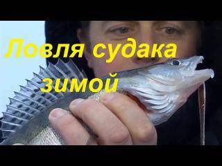 Ловля судака зимой на балансиры,блесна-Рыбалка братья Щербаковы видео