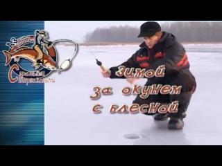 Ловля окуня зимой на блесну со льда-Рыбалка братья Щербаковы видео