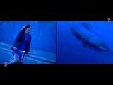 Maratone feat. Gracie - A Brand New Day (Dreamy Darker Remix) Redux Promo Video