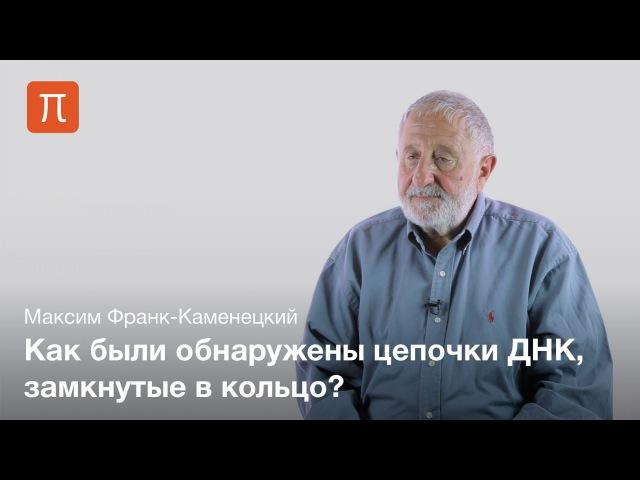 2. Кольцевые ДНК — Максим Франк-Каменецкий