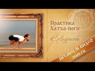 Практика хатха-йоги с Екатериной Андросовой