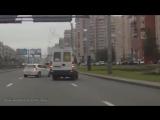 Животные на дороге! Человеческая доброта! - Animals on the road