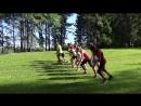Техванди: старт кросса на 5 км